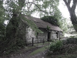 Abandoned_Cottage_desat