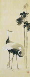 japanese_crane_creen_image