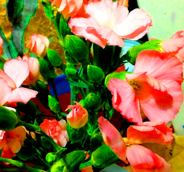 modern_pinks_studio1